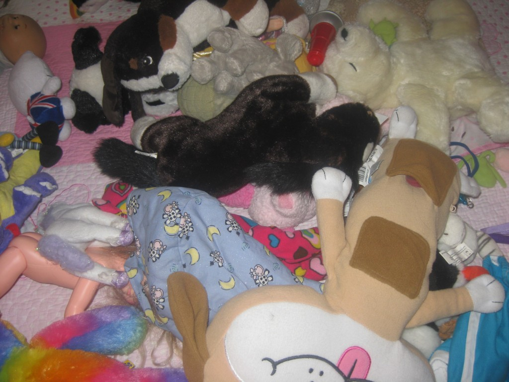 Parents, you get this.  Stuffed animals are my tidying nemesis.