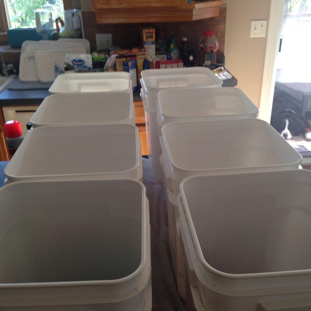 To pack for this trip, we got free buckets from DQ - perfect canoe size! We packed different bins for different meals and used them as tables.