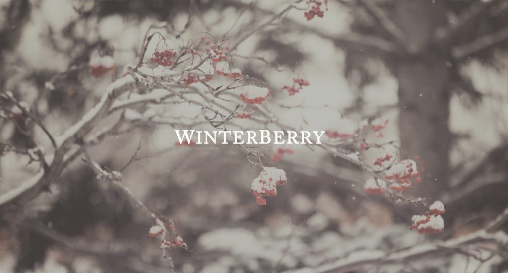 Winterberry Apparel