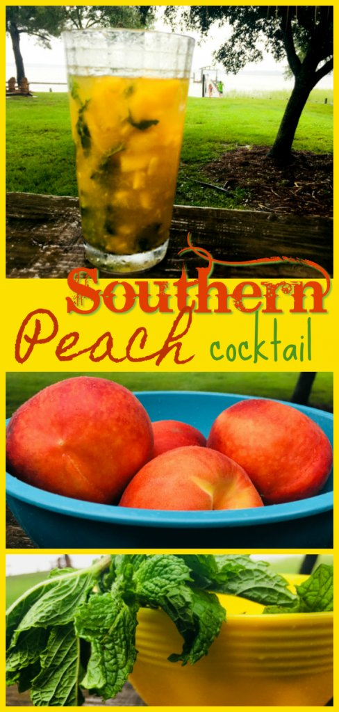 Southern Peach Cocktail Recipe by The Spirited Thrifter #peach #peachcocktail #gin #gincocktail #southernpeach #cocktailhour