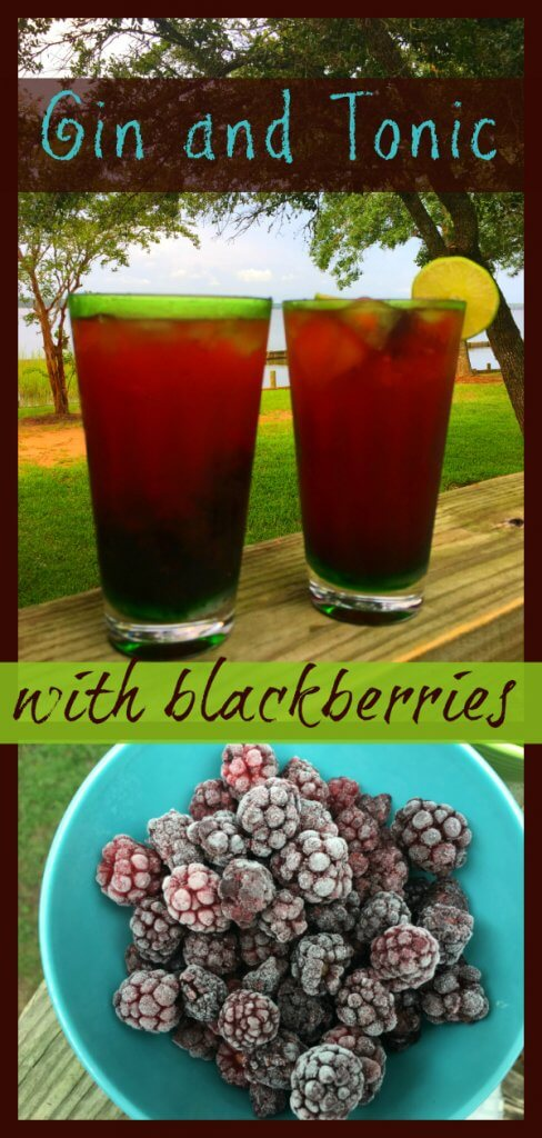 Gin and Tonic with Blackberries