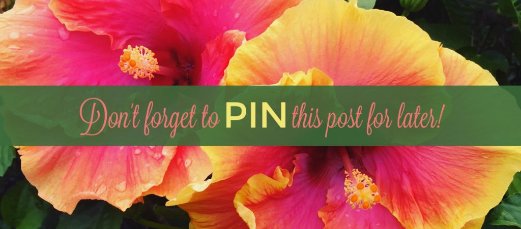 Follow The Spirited Thrifter on Pinterest