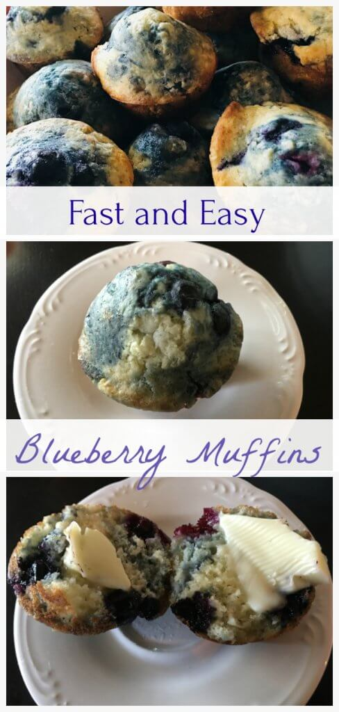 Blueberry Muffin Recipe by The Spirited Thrifter